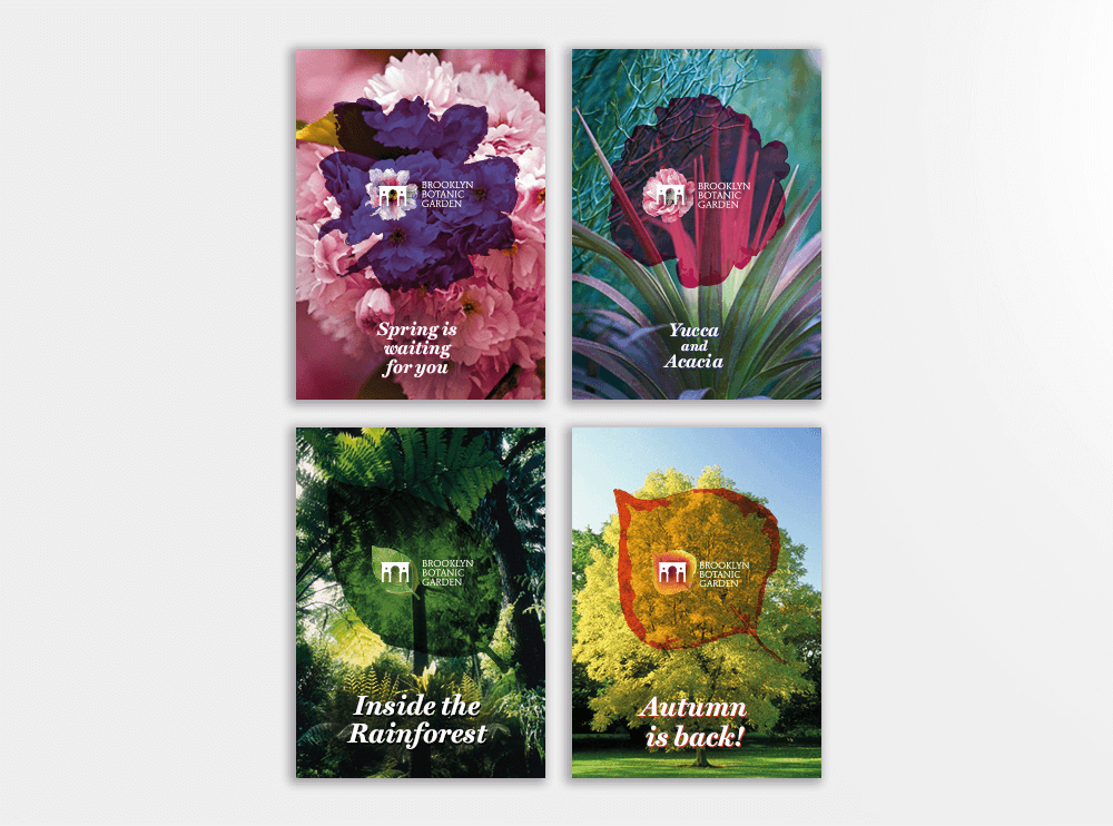 branding projects brooklyn-botanic-garden-nyc-posters-logo-design-branding-flower-plants